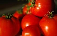 Os Benefícios do Tomate