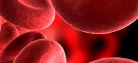 Anemia – Causas, Sintomas e Tratamentos