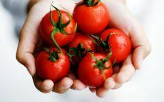 Os 8 Benefícios do licopeno para saúde