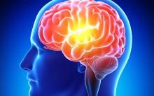 Os 6 Remédios Caseiros para Melhorar a Memória