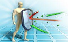 Os 8 Remédios Caseiros para Aumentar a Imunidade