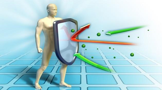 remédios caseiros para aumentar a imunidade