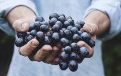 Os 8 Benefícios das Uvas para Saúde
