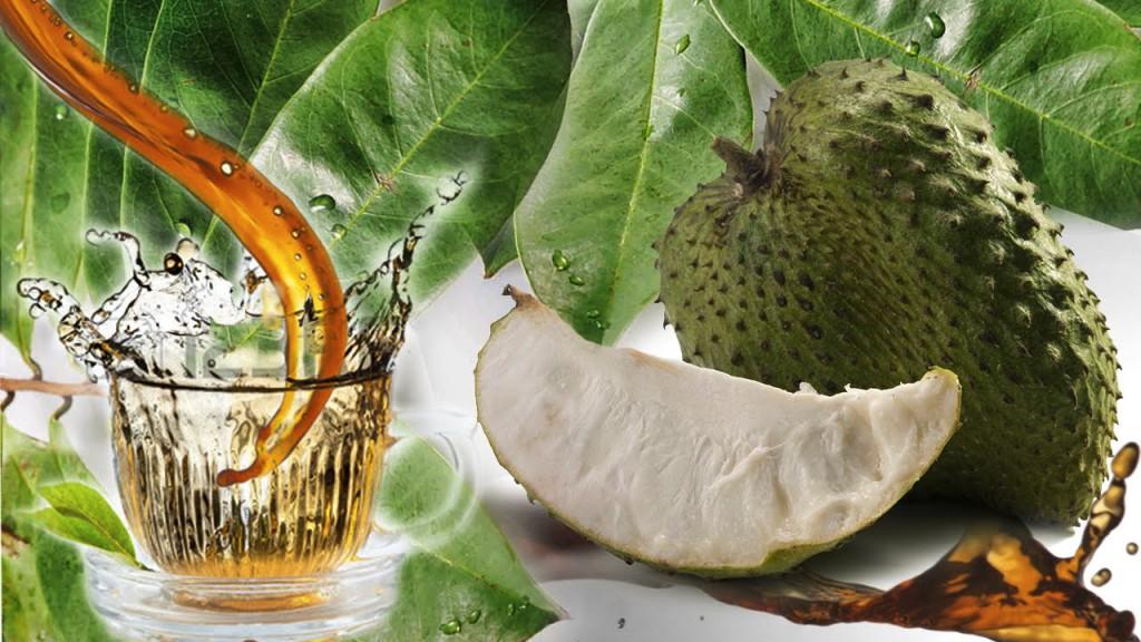 Os 9 Benefícios do Chá de Graviola Para Saúde