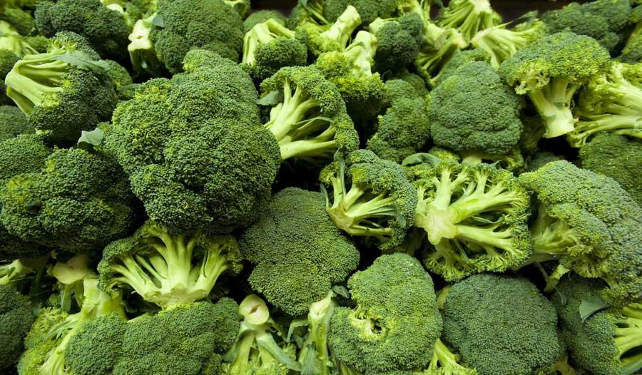 Os 16 Benefícios do Brócolis Para Tua Saúde