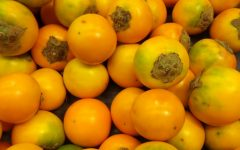 Os 16 Benefícios da Naranjilla Para Saúde