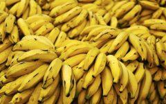 Os 21 Benefícios e Malefícios da Banana Para Saúde!