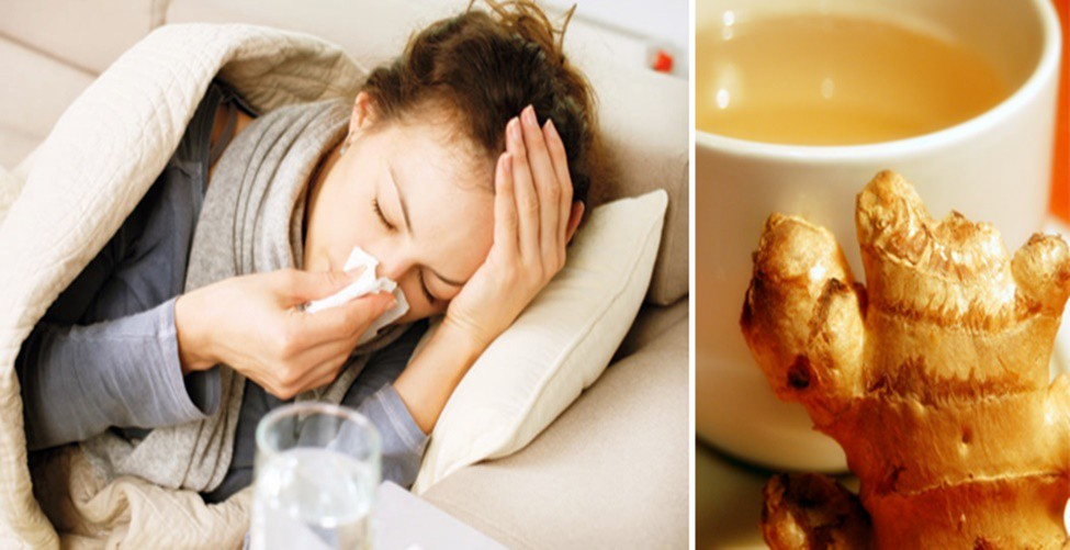 cha de limao para gripe