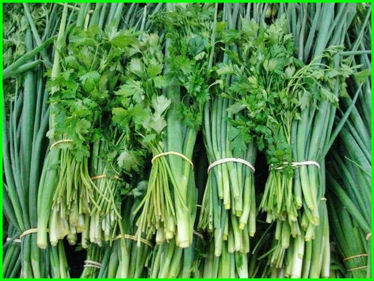 beneficios do cheiro verde